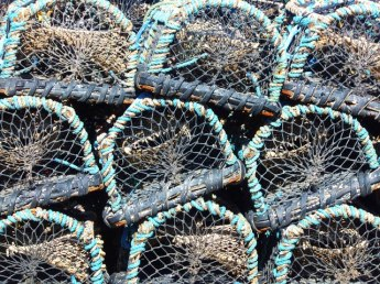 lobster-pots