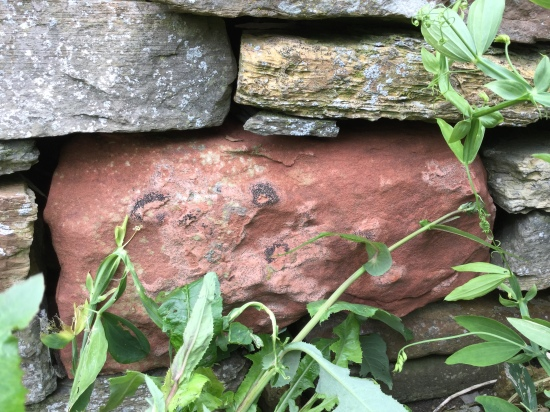 Birsay Mapping Magnus red sandstone