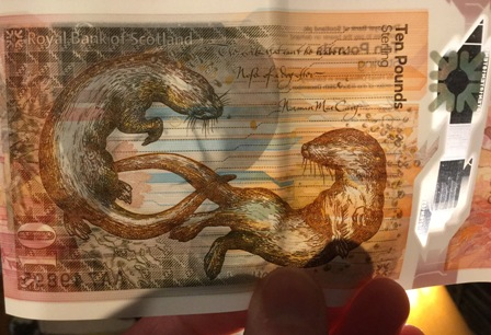 £10 note otters
