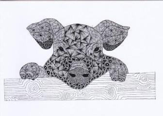 Pig Anna McEwen
