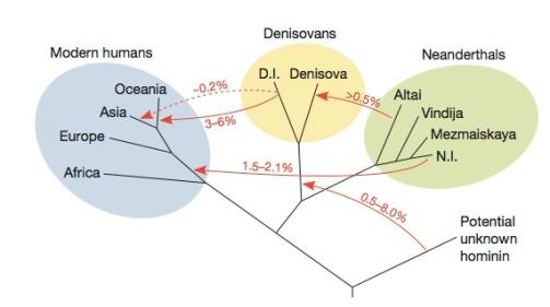 promiscuity-in-the-pleistocene