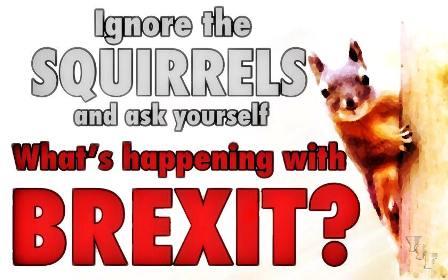 ignore the squirrels
