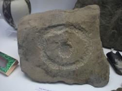 Brodgar Eye stone B Bell
