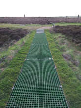 Ring of Brodgar improvements 1