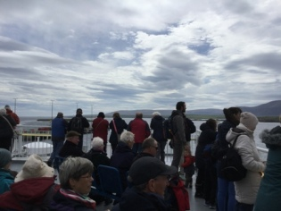 Stromness nature cruise 6