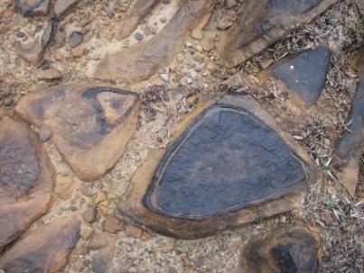 Yesnaby stromatolites B Bell
