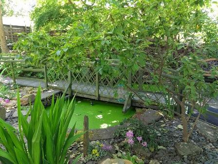 Blide Trust Gardens Sat