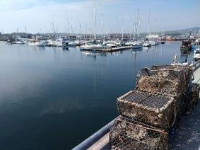 creels kirkwall harbour