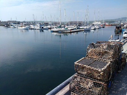 creels kirkwall harbour