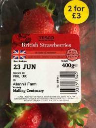 Tesco Strawberries