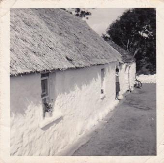 Thatched house B Bell