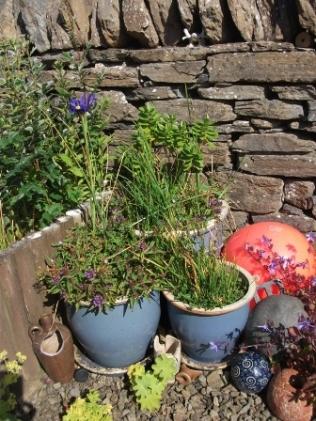 gardening 1 B Bell