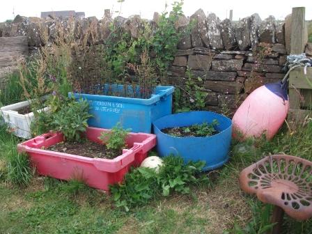 gardening 11 B Bell