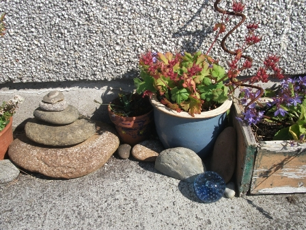 gardening 7 B Bell