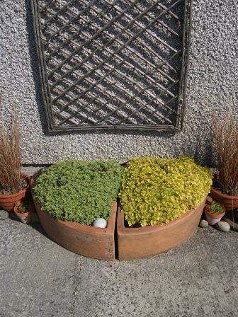 gardening 8 B Bell
