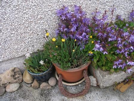 gardening 9 B Bell