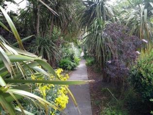 Tankerness House Garden path 2
