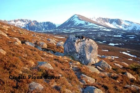 mountains Fiona Driver Cairngorms