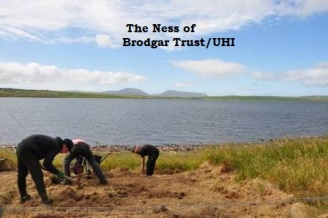 Ness of Brodgar Trench Y 1st stone axe
