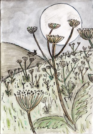 The Hogweed Mike Bell