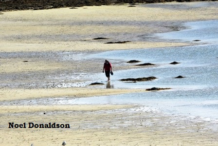 Westray beach scene