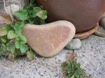 heart stone 5