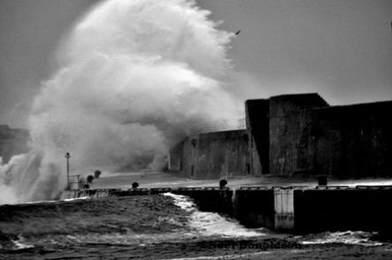 image by Noel Donaldson