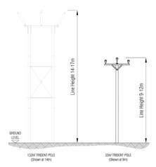 Trident & domestic poles
