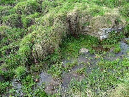 overgrown well B Bell