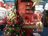 Christmas spotting garden centre