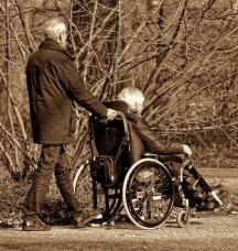 person pushing wheelchair