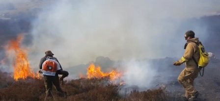 wildfire SFRS 1
