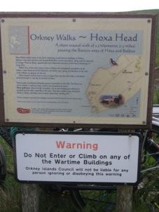 Hoxa Head 1