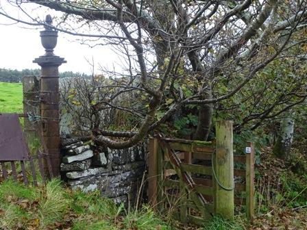 Binscarth Woods Autumn St Magnus Way Bell