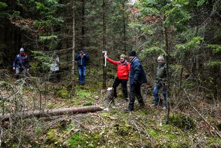 Harvey Johnston at Christmas Tree cutting Norway 2019