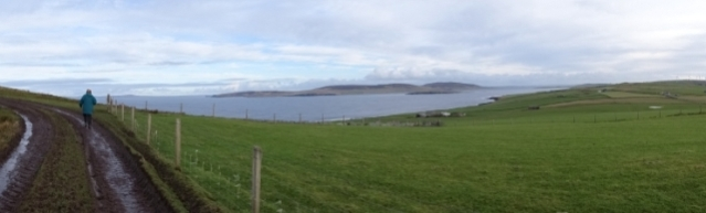 panorama above Swannay Bell
