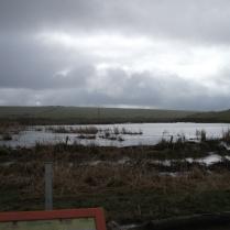 Inganess flood Bell