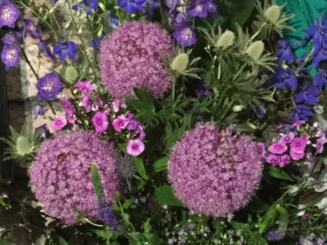flower festival 2019